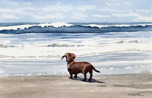 Dachshund Dog Art Print Signed by Artist DJ Rogers