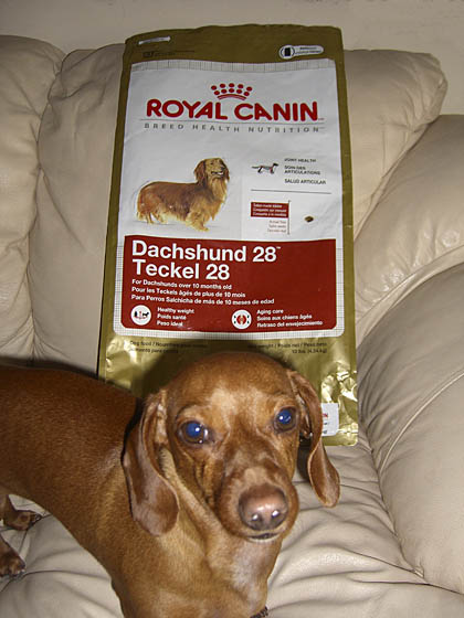 dachshund-food-with-glucosamine-royal-canin
