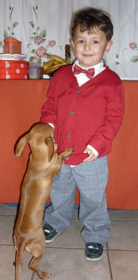teach-children-about-pets-early-in-life